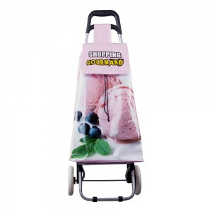 Chariot de shopping trolley GLACE